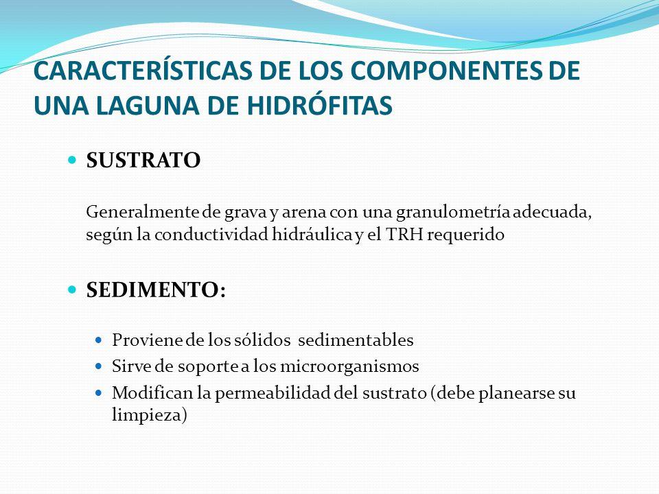 CARACTERÍSTICAS DE LOS COMPONENTES DE UNA LAGUNA DE HIDRÓFITAS