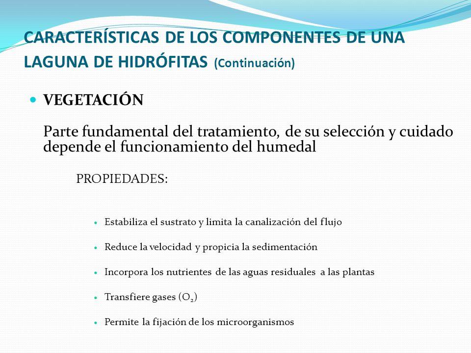 CARACTERÍSTICAS DE LOS COMPONENTES DE UNA LAGUNA DE HIDRÓFITAS (Continuación)