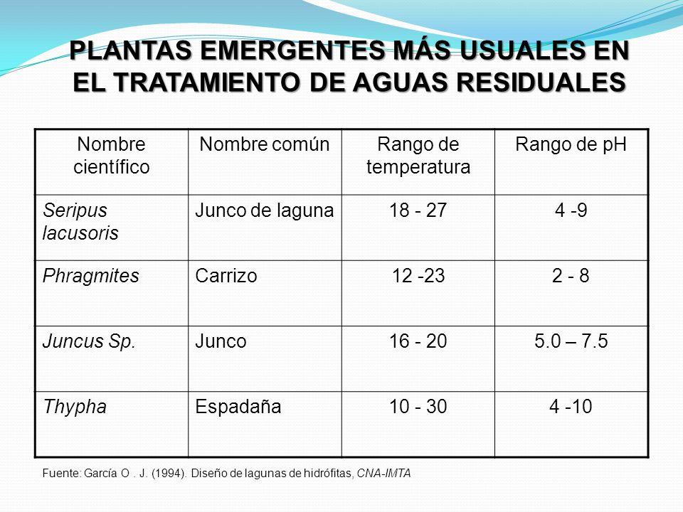 PLANTAS EMERGENTES MÁS USUALES EN EL TRATAMIENTO DE AGUAS RESIDUALES