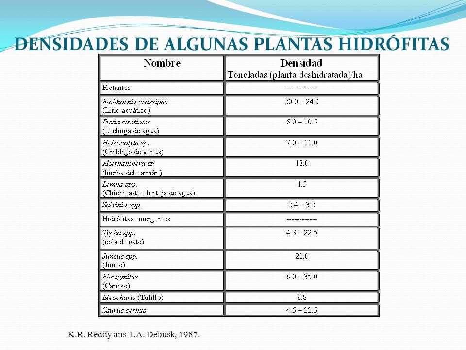 DENSIDADES DE ALGUNAS PLANTAS HIDRÓFITAS