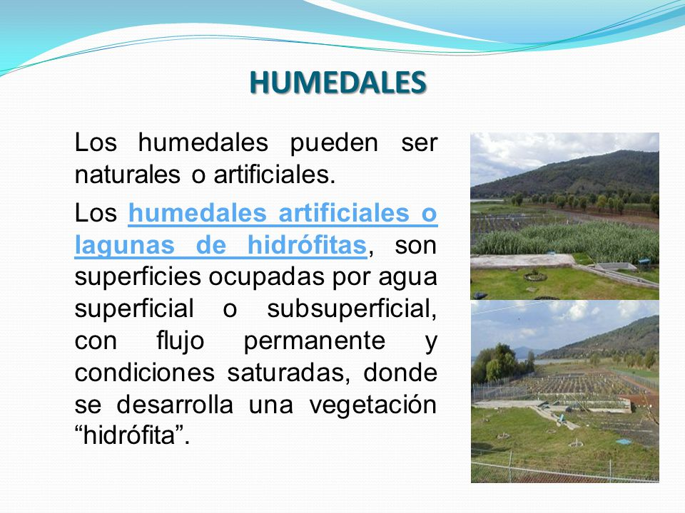 HUMEDALES Los humedales pueden ser naturales o artificiales.