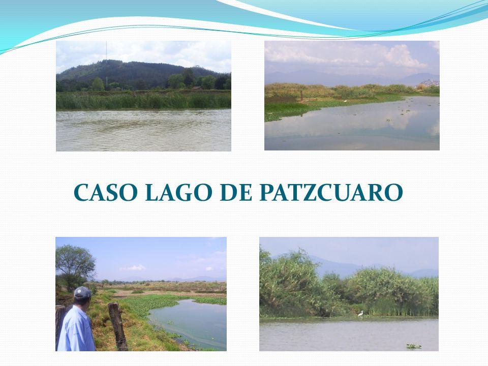 CASO LAGO DE PATZCUARO