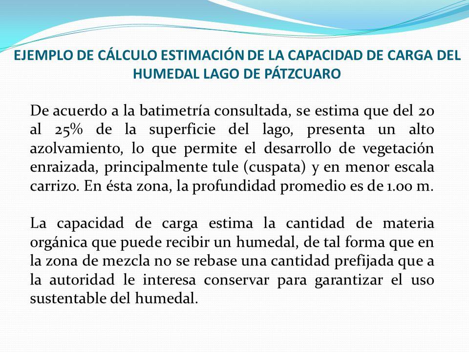 EJEMPLO DE CÁLCULO ESTIMACIÓN DE LA CAPACIDAD DE CARGA DEL HUMEDAL LAGO DE PÁTZCUARO