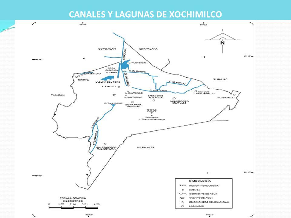 CANALES Y LAGUNAS DE XOCHIMILCO