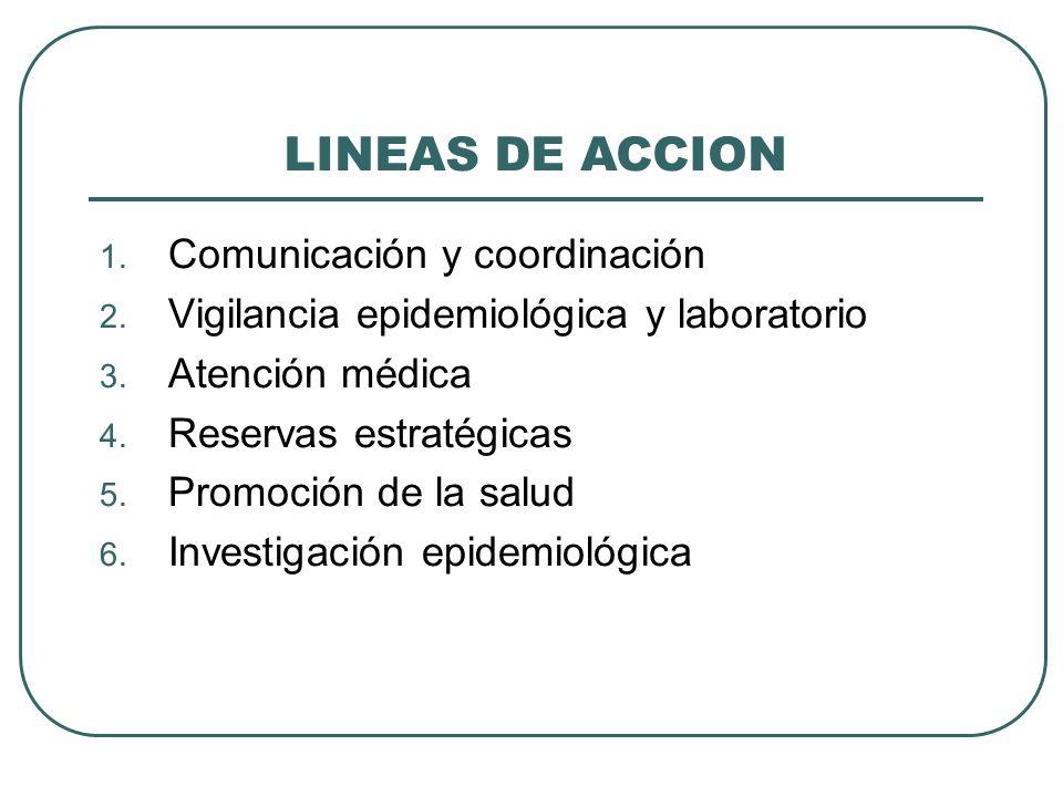 LINEAS DE ACCION Comunicación y coordinación