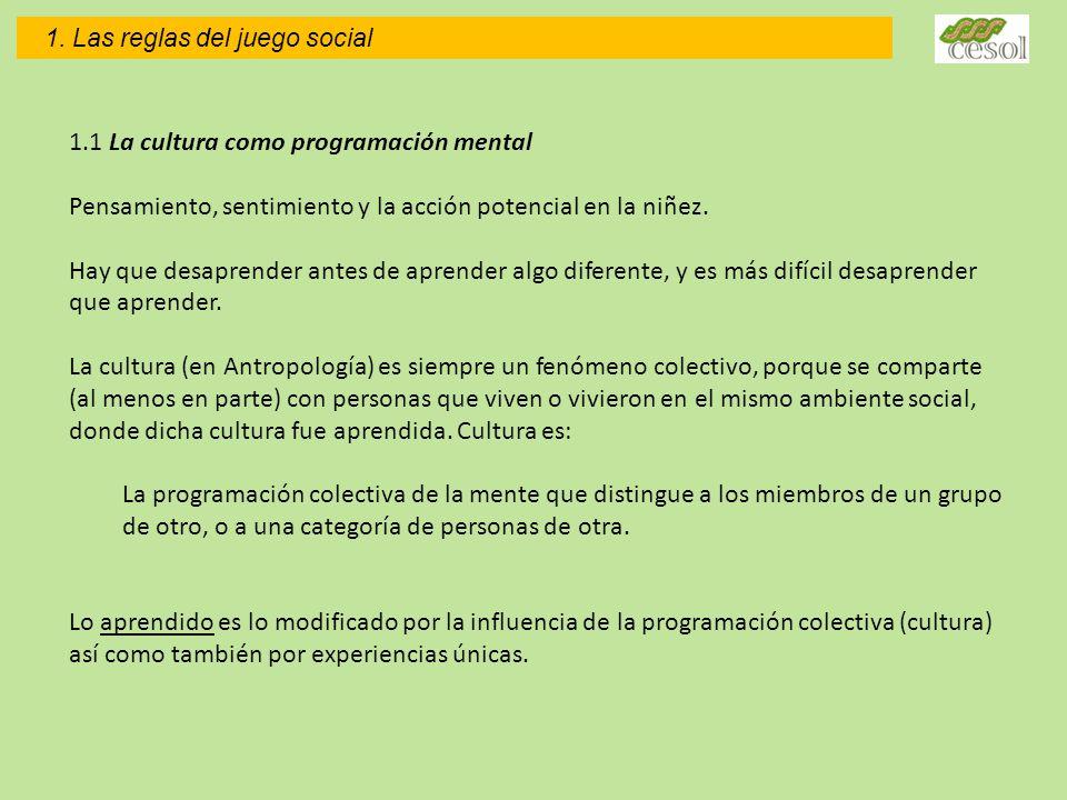 1.1 La cultura como programación mental