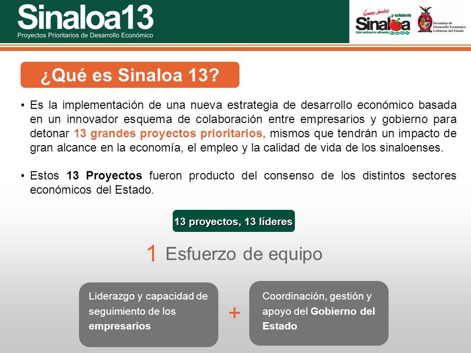1 + ¿Qué es Sinaloa 13 Esfuerzo de equipo