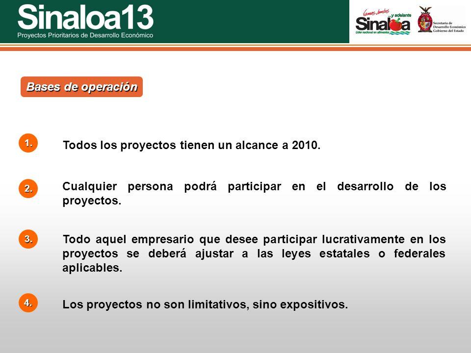 Todos los proyectos tienen un alcance a 2010.