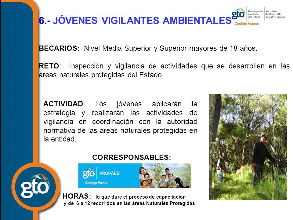 6.- JÓVENES VIGILANTES AMBIENTALES