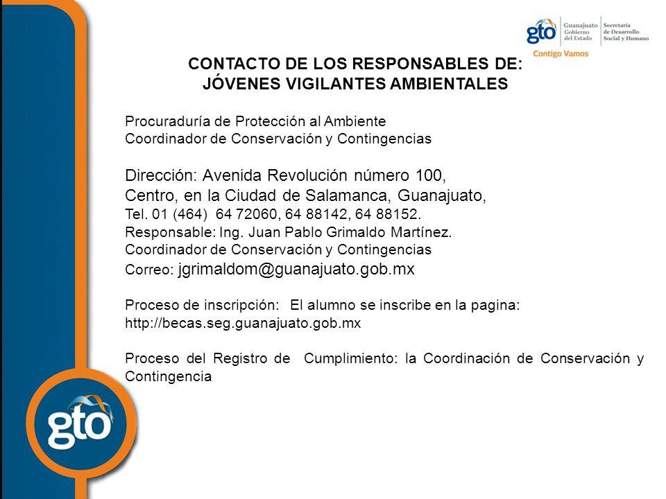 CONTACTO DE LOS RESPONSABLES DE: JÓVENES VIGILANTES AMBIENTALES
