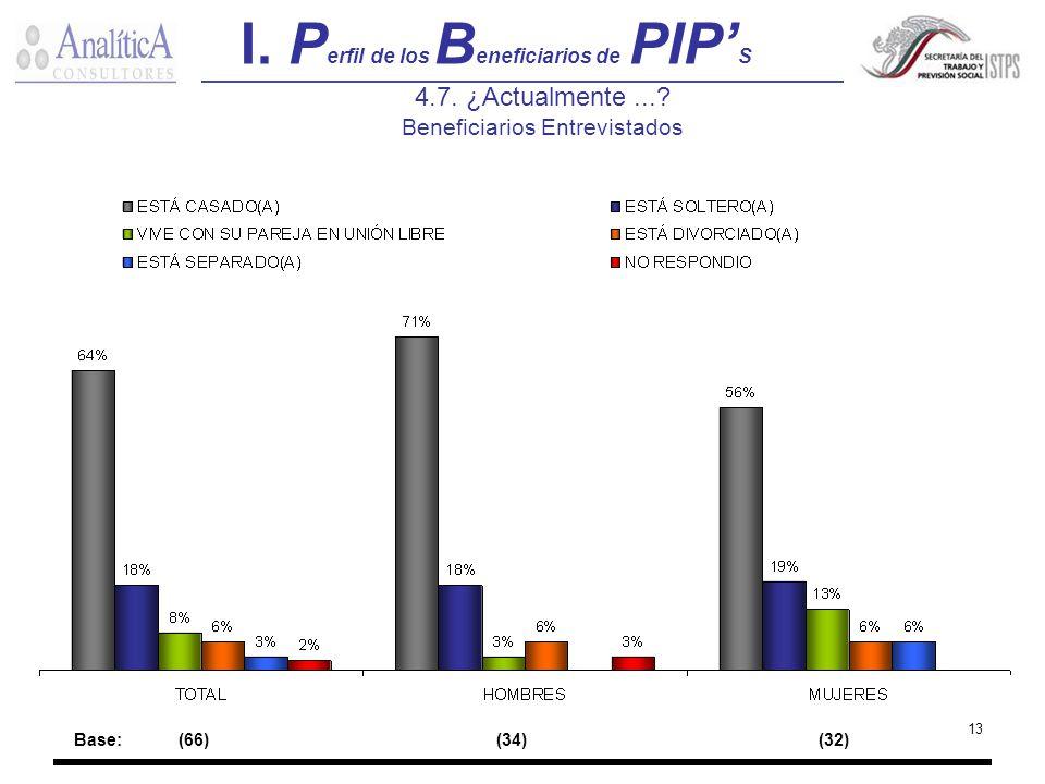 I. Perfil de los Beneficiarios de PIP'S