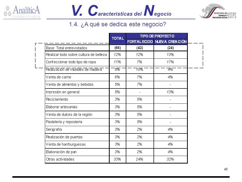 V. Caracteristicas del Negocio