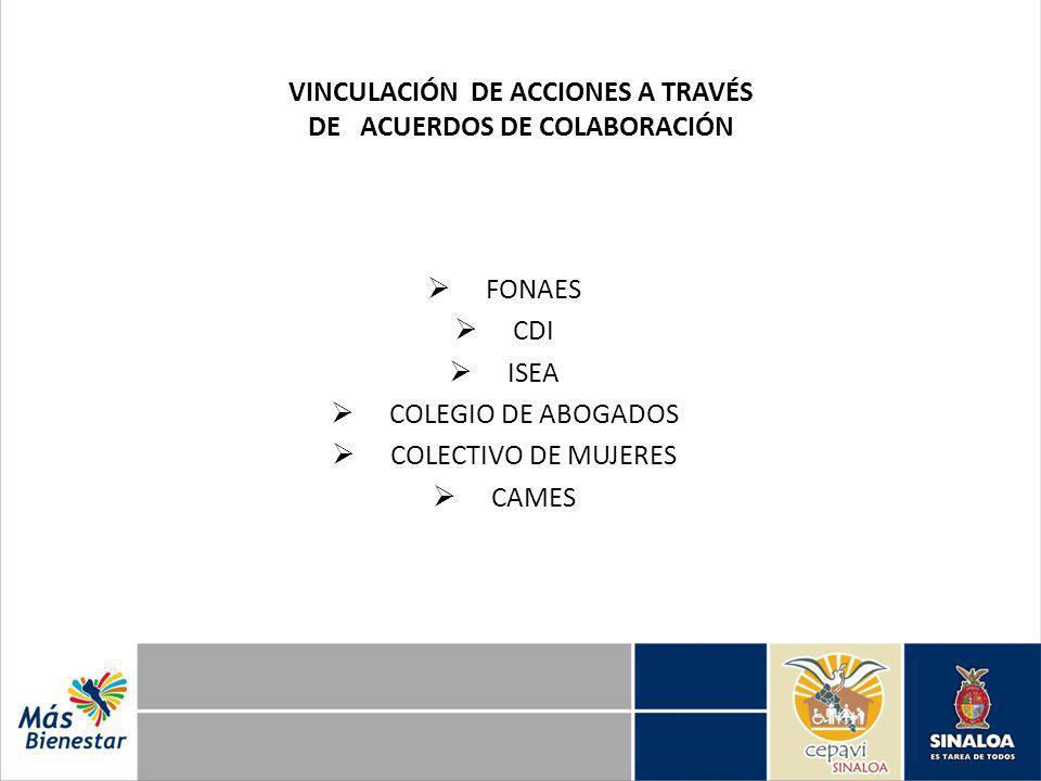 VINCULACIÓN DE ACCIONES A TRAVÉS DE ACUERDOS DE COLABORACIÓN