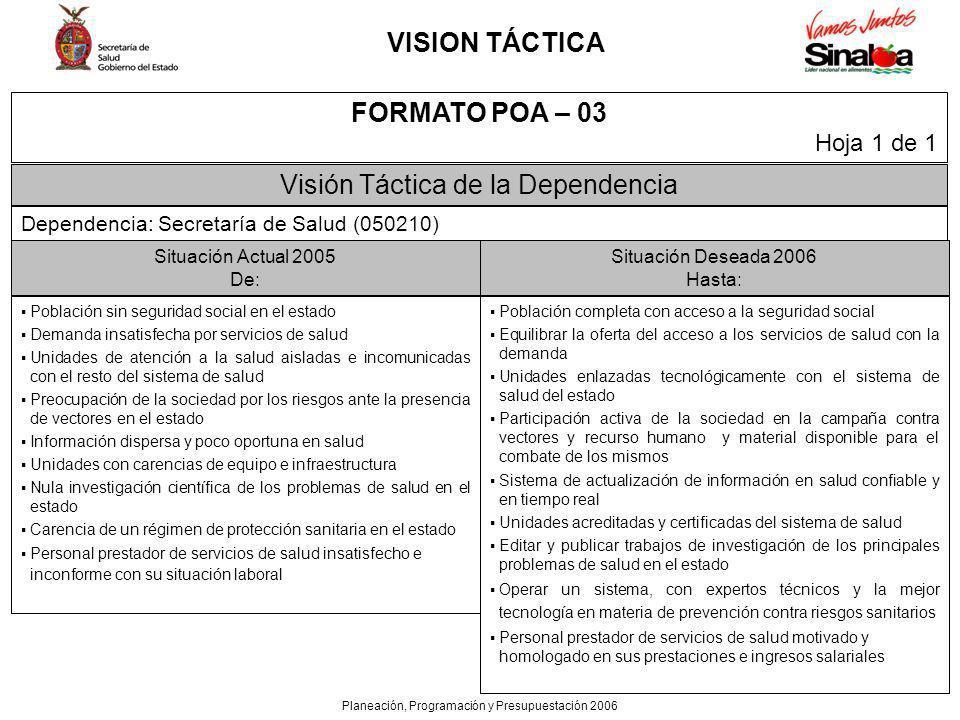 VISION TÁCTICA FORMATO POA – 03
