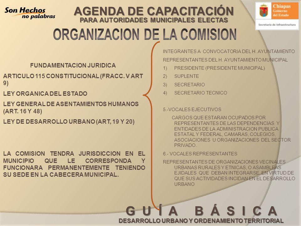 ORGANIZACION DE LA COMISION FUNDAMENTACION JURIDICA