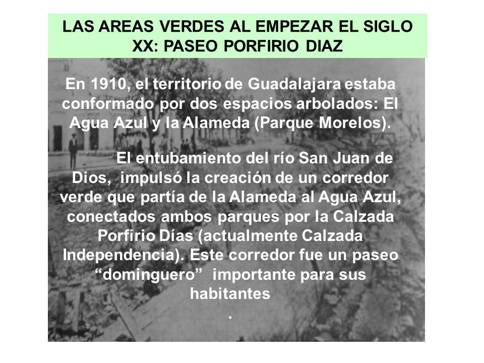 LAS AREAS VERDES AL EMPEZAR EL SIGLO XX: PASEO PORFIRIO DIAZ