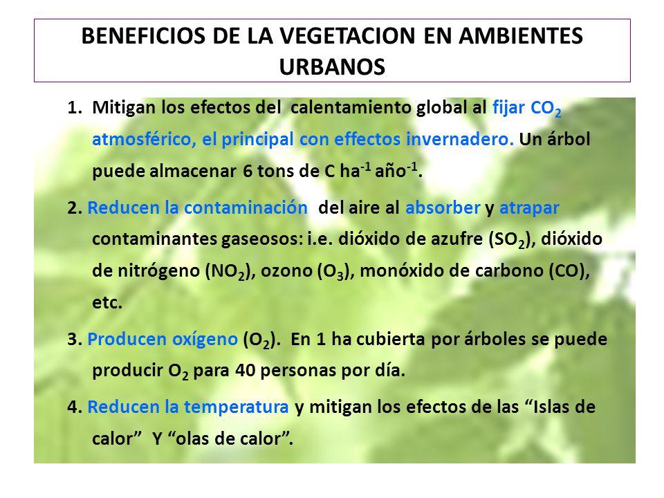 BENEFICIOS DE LA VEGETACION EN AMBIENTES URBANOS