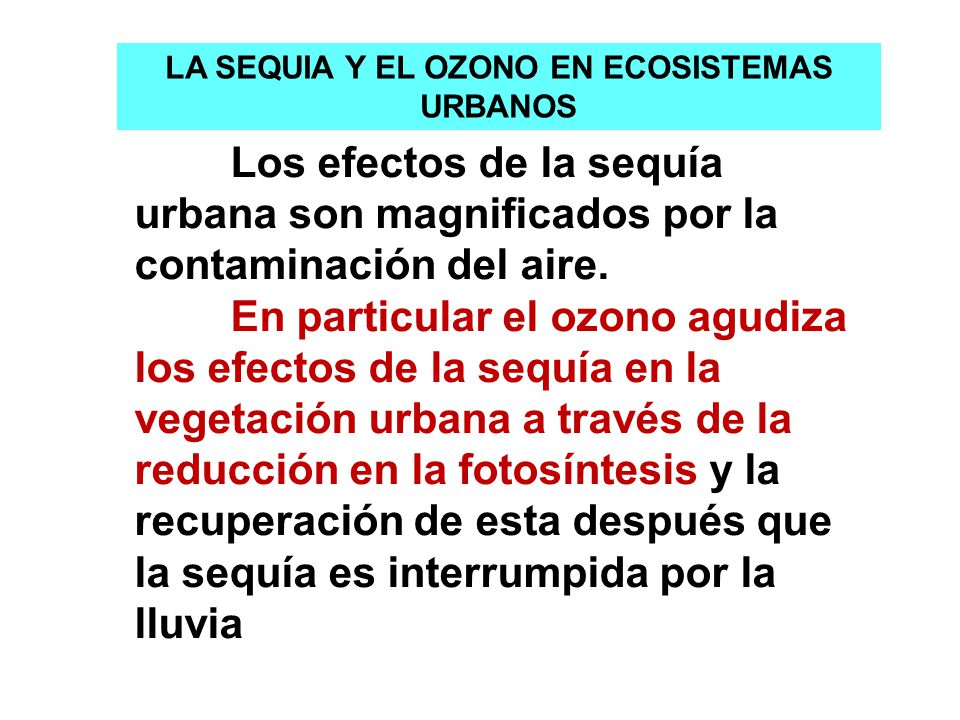 LA SEQUIA Y EL OZONO EN ECOSISTEMAS URBANOS