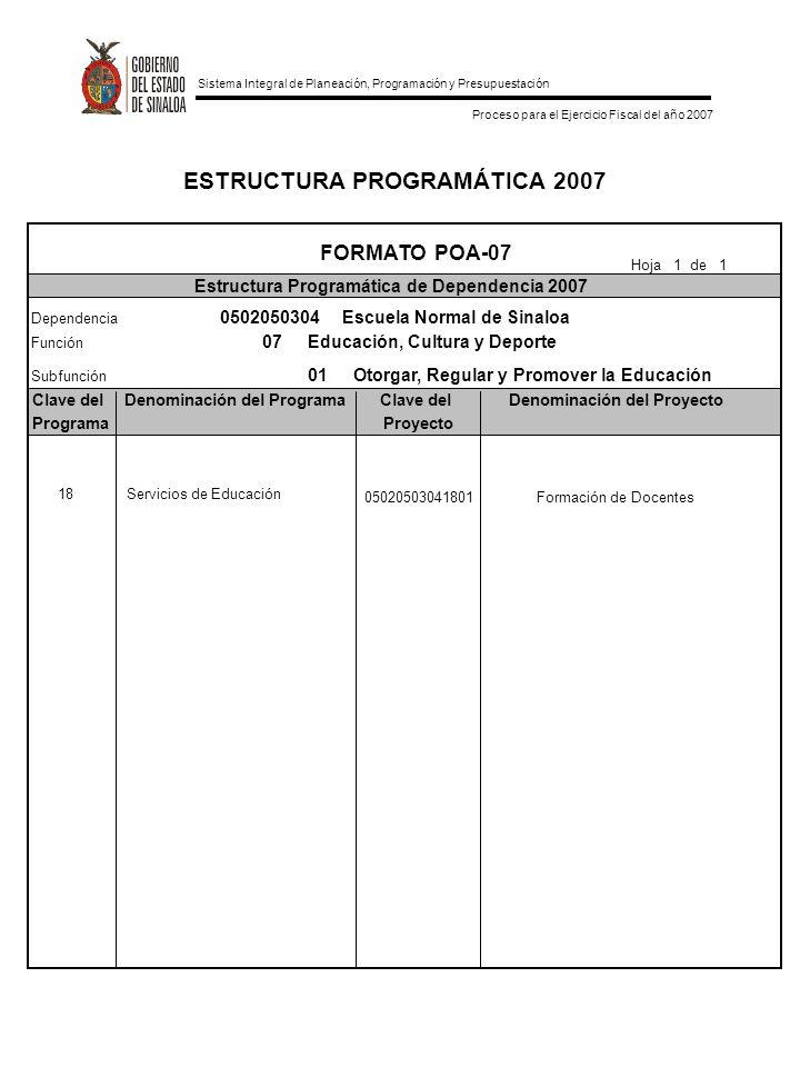 ESTRUCTURA PROGRAMÁTICA 2007