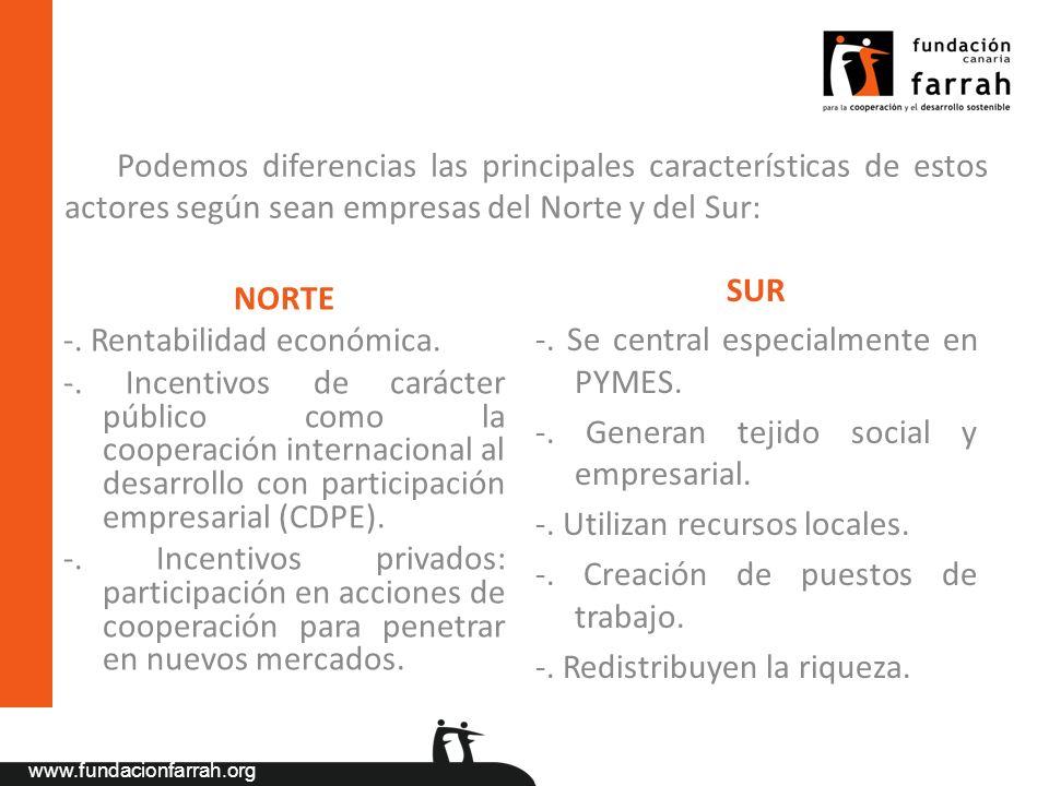 Podemos diferencias las principales características de estos actores según sean empresas del Norte y del Sur:
