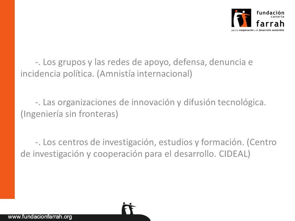 -. Los grupos y las redes de apoyo, defensa, denuncia e incidencia política. (Amnistía internacional)