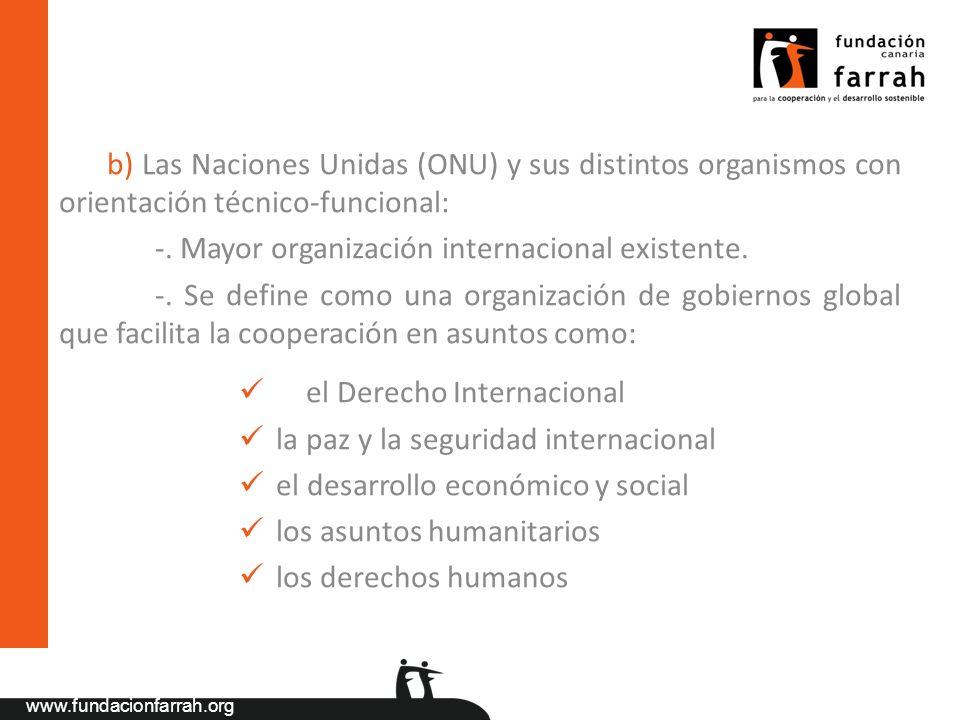 b) Las Naciones Unidas (ONU) y sus distintos organismos con orientación técnico-funcional:
