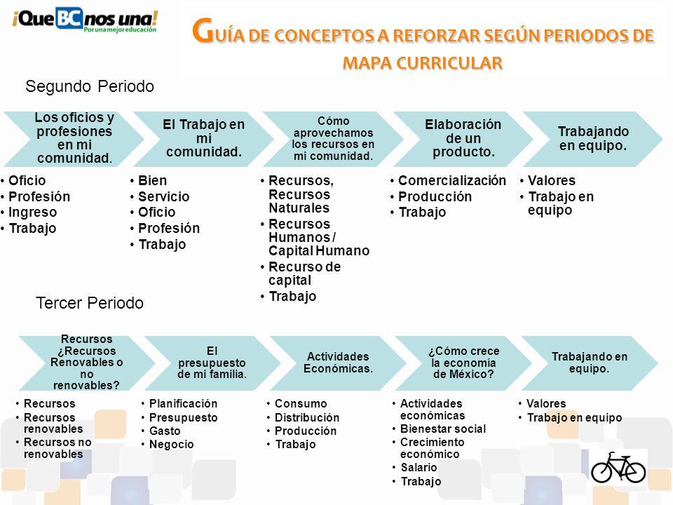 GUÍA DE CONCEPTOS A REFORZAR SEGÚN PERIODOS DE MAPA CURRICULAR
