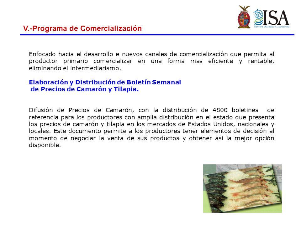 V.-Programa de Comercialización