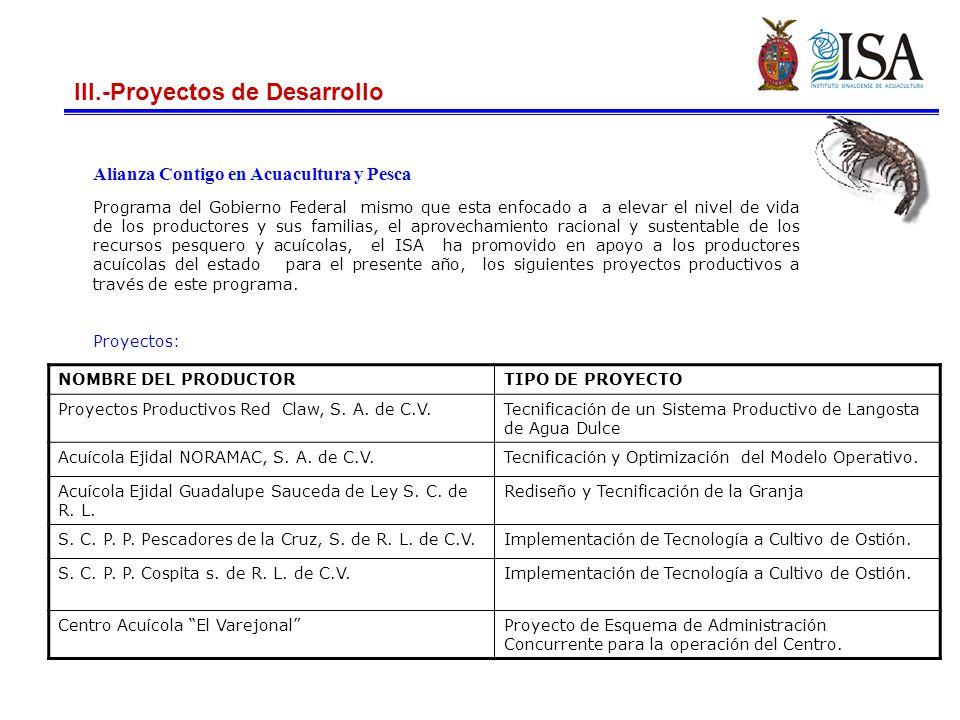 III.-Proyectos de Desarrollo
