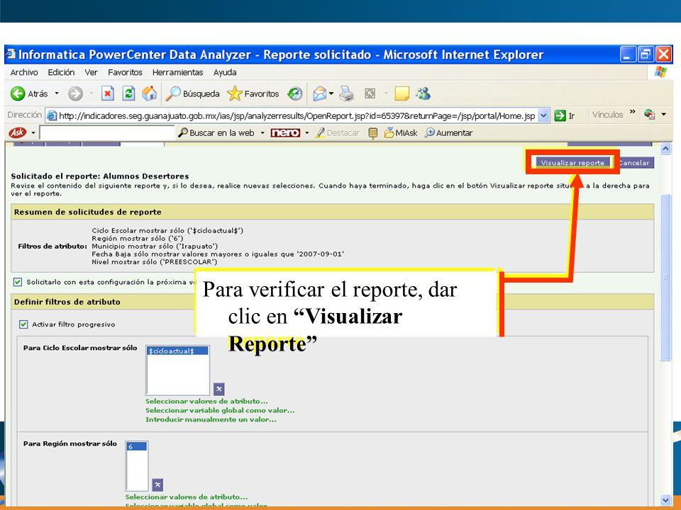 Para verificar el reporte, dar clic en Visualizar Reporte