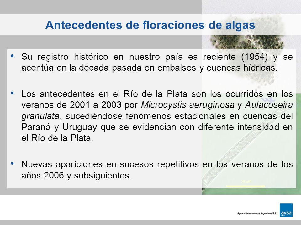 Antecedentes de floraciones de algas