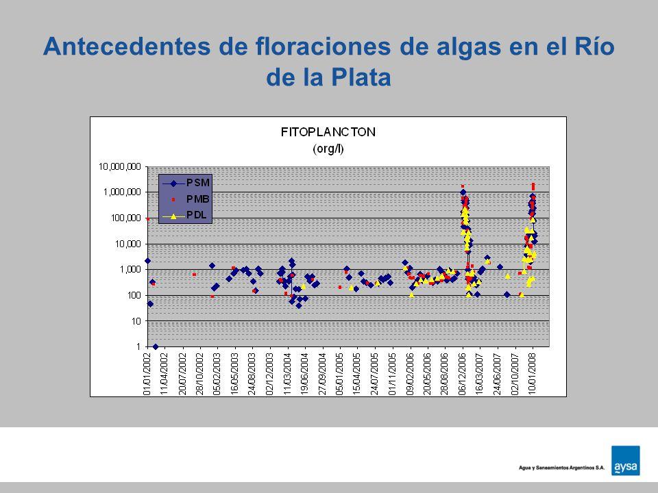 Antecedentes de floraciones de algas en el Río de la Plata