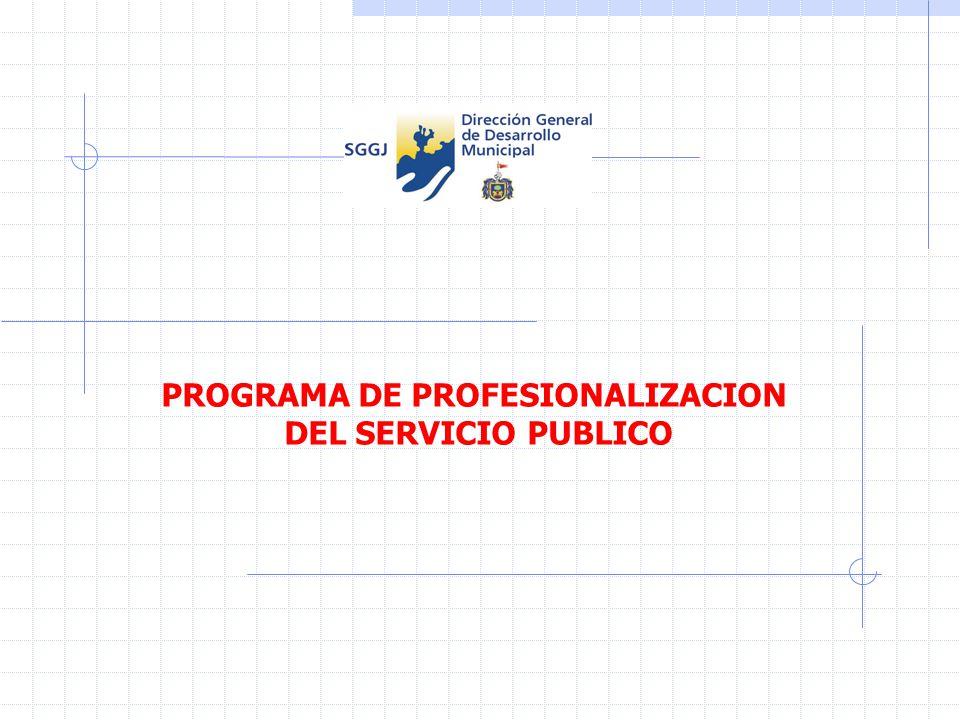 PROGRAMA DE PROFESIONALIZACION