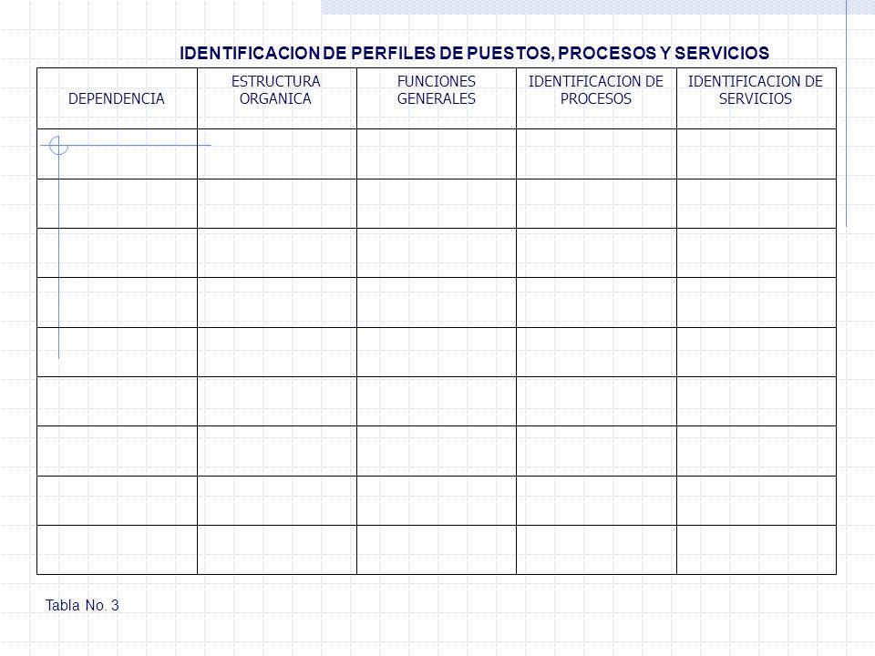 IDENTIFICACION DE PERFILES DE PUESTOS, PROCESOS Y SERVICIOS