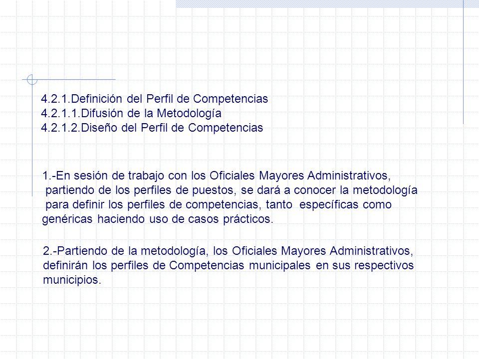 4.2.1.Definición del Perfil de Competencias