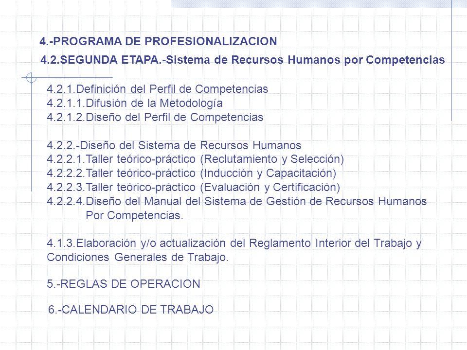 4.-PROGRAMA DE PROFESIONALIZACION