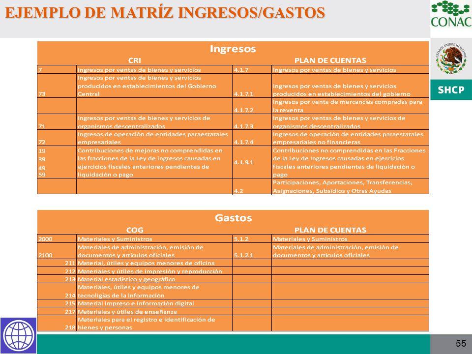 EJEMPLO DE MATRÍZ INGRESOS/GASTOS
