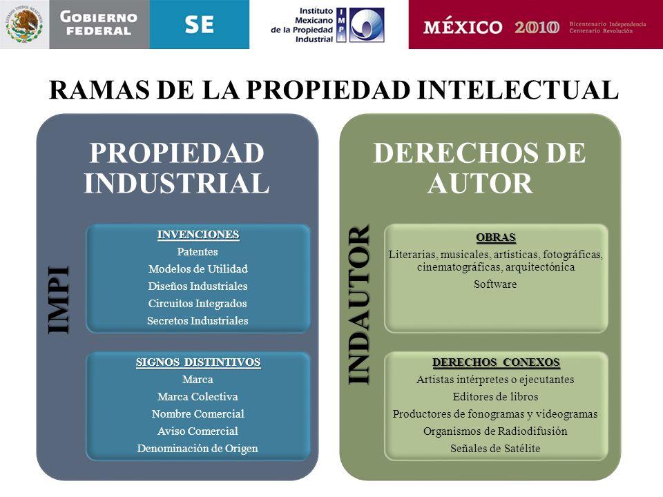 RAMAS DE LA PROPIEDAD INTELECTUAL