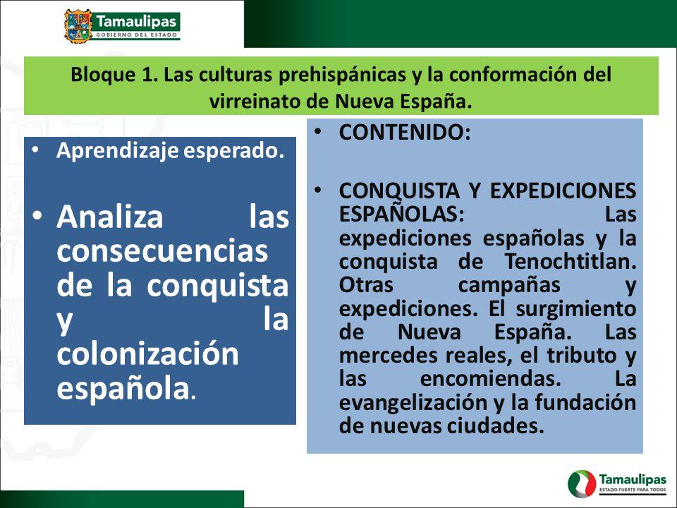 Analiza las consecuencias de la conquista y la colonización española.