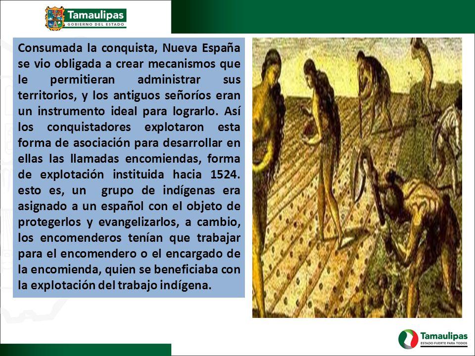 Consumada la conquista, Nueva España se vio obligada a crear mecanismos que le permitieran administrar sus territorios, y los antiguos señoríos eran un instrumento ideal para lograrlo.