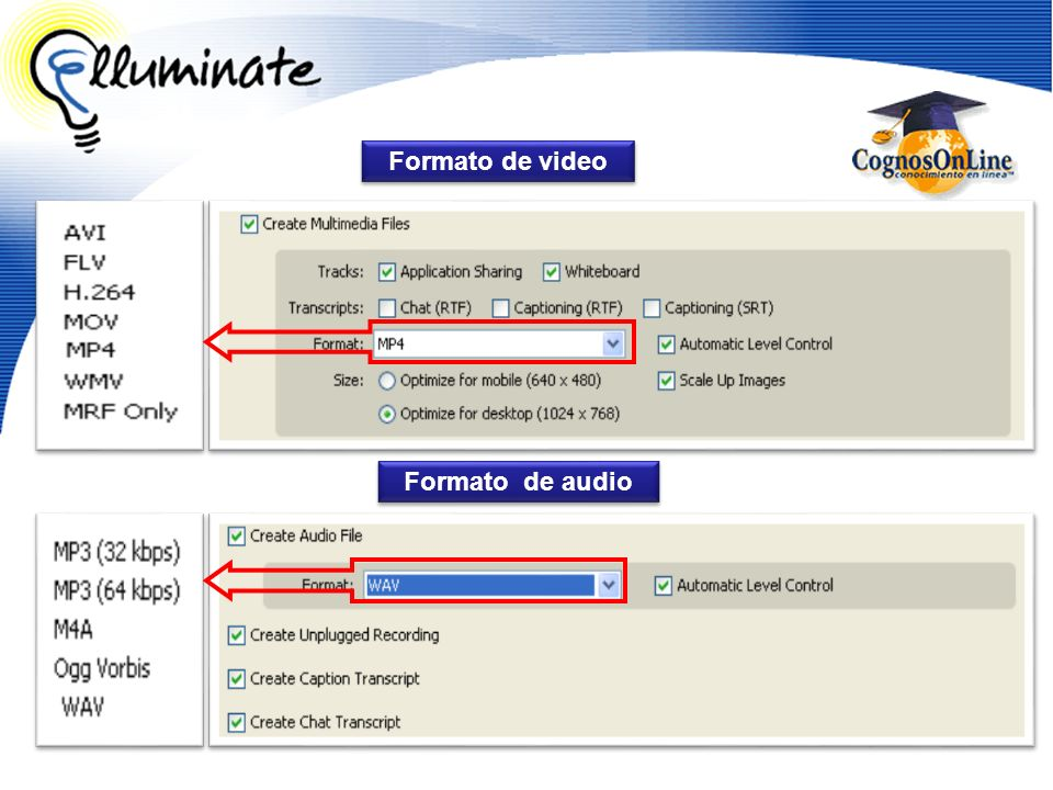 Formato de video Formato de audio