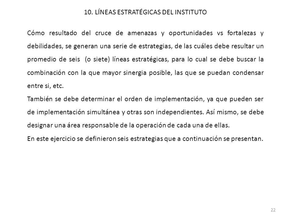 10. LÍNEAS ESTRATÉGICAS DEL INSTITUTO