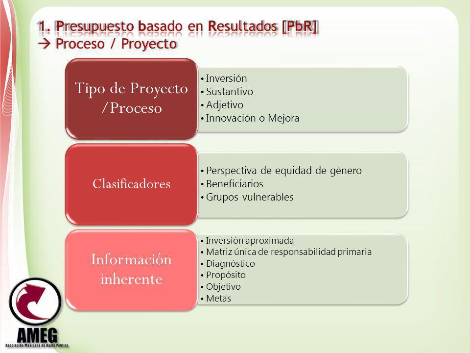 Tipo de Proyecto /Proceso