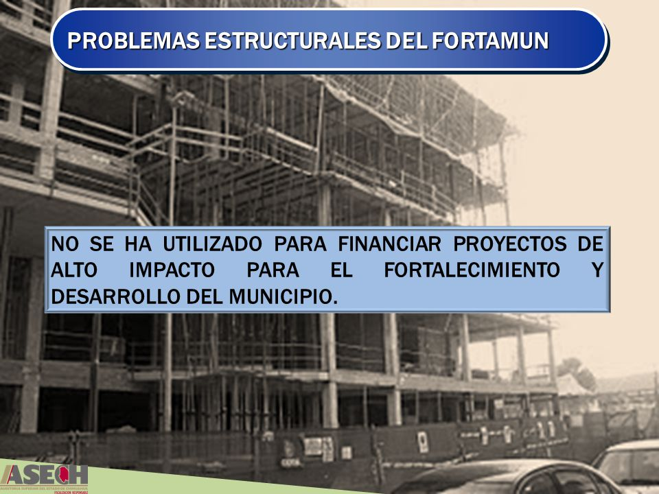 PROBLEMAS ESTRUCTURALES DEL FORTAMUN