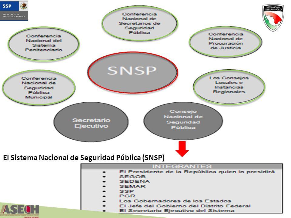 El Sistema Nacional de Seguridad Pública (SNSP)