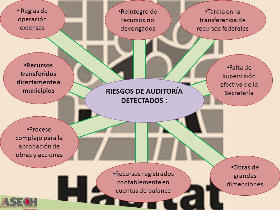 RIESGOS DE AUDITORÍA DETECTADOS :