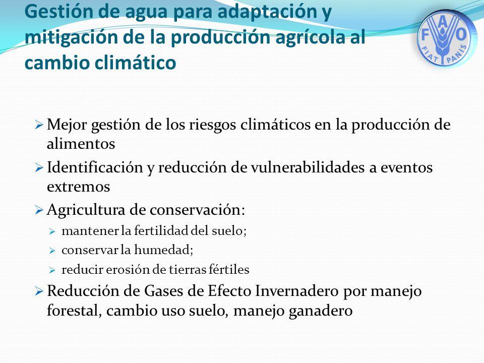 Gestión de agua para adaptación y mitigación de la producción agrícola al cambio climático