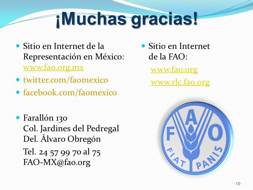 ¡Muchas gracias! Sitio en Internet de la Representación en México: www.fao.org.mx. twitter.com/faomexico.