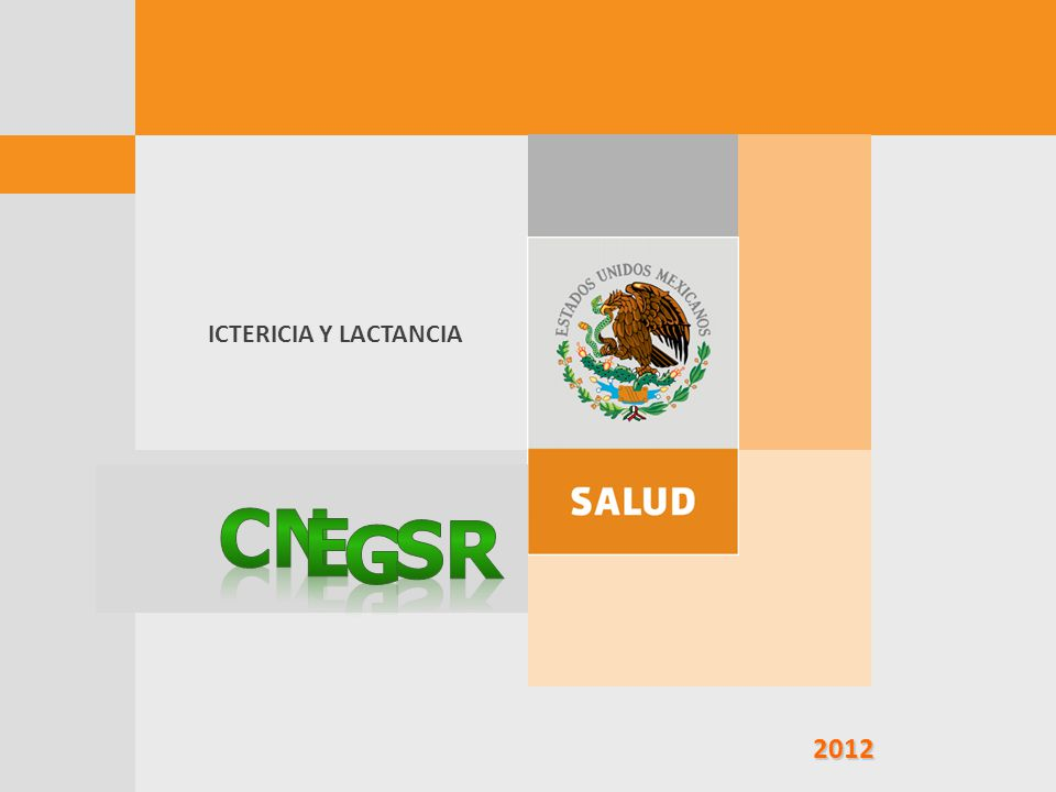 ICTERICIA Y LACTANCIA CN e G SR 2012