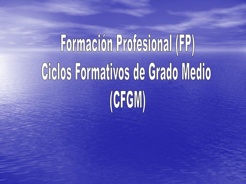 Formación Profesional (FP) Ciclos Formativos de Grado Medio (CFGM)